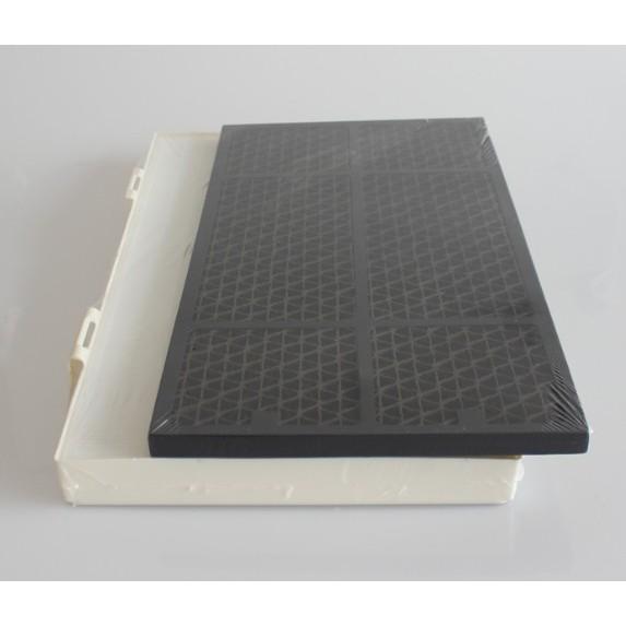 【 現貨 副廠】Amway 安麗 第二代 2代 101076-T 11-8040 20mm 活性碳 空氣清淨機 濾網
