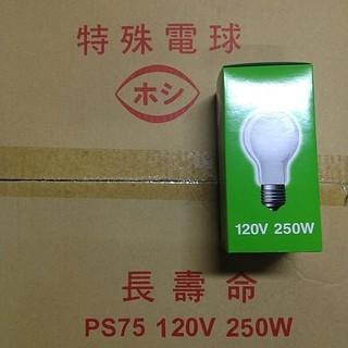 《電料專賣》 250W 燈泡 200W 燈泡  木川 E27 110V 新北市