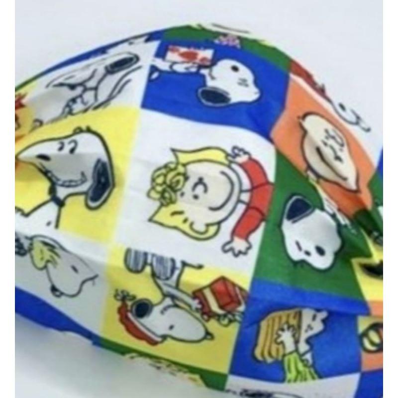 🔥現貨 熱賣🔥【史努比 口罩】Snoopy (同樂會) 卡通口罩 (非醫用) 成人款