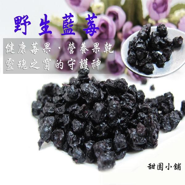 野生藍莓粒 隨手包 豐富的花青素 【甜園小舖】