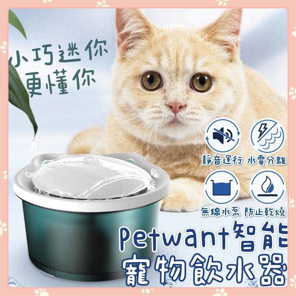 新品呦💖 🐾Petwant 迷你智能寵物飲水器🐾超靜音 防乾燒 寶石綠色 小巧靜音 小小貓用 智能飲水機