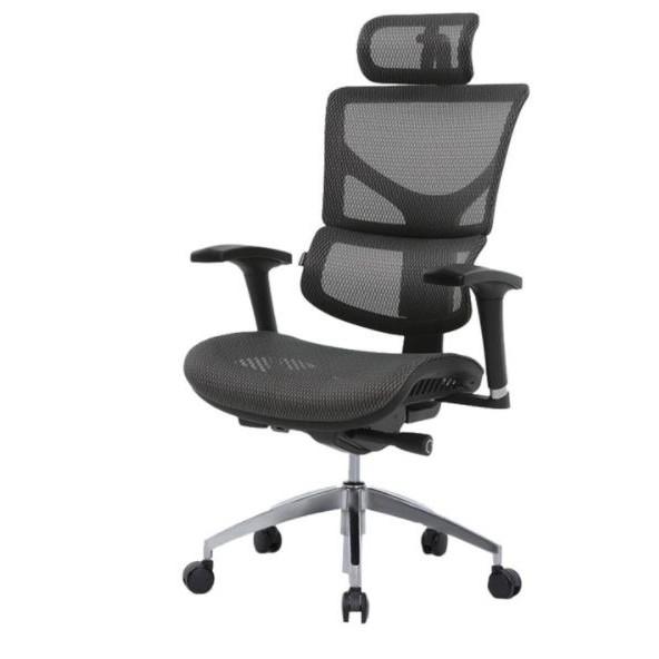 Costco代購-Ergoking全功能網布人體工學椅 黑