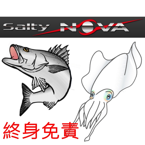 Abu Garcia Salty NOVA Series 路亞竿 釣竿 海釣