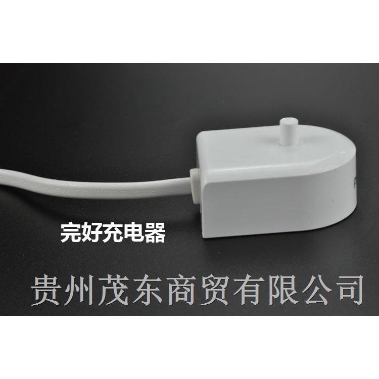 ▧飛利浦電動牙刷感應充電器 HX6100 HX6950 HX6730 HX8140 HX9172