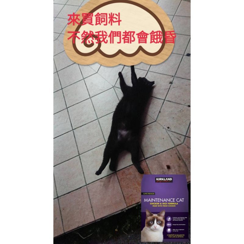 浪貓基金 好市多 costco 代購 紫包 Kirkland 科克蘭 雞肉&米配方乾貓糧貓飼料