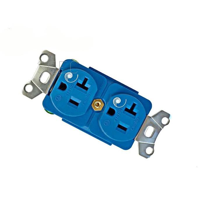 CARDAS 美國 4181US 鍍銀 鍍銠 Hi-End 音響級 電源插座 壁插