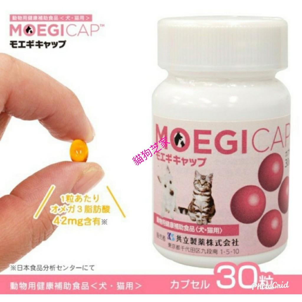 **貓狗芝家** 貝節益 膠囊30顆 錠狀50顆 日本共立 犬貓通用