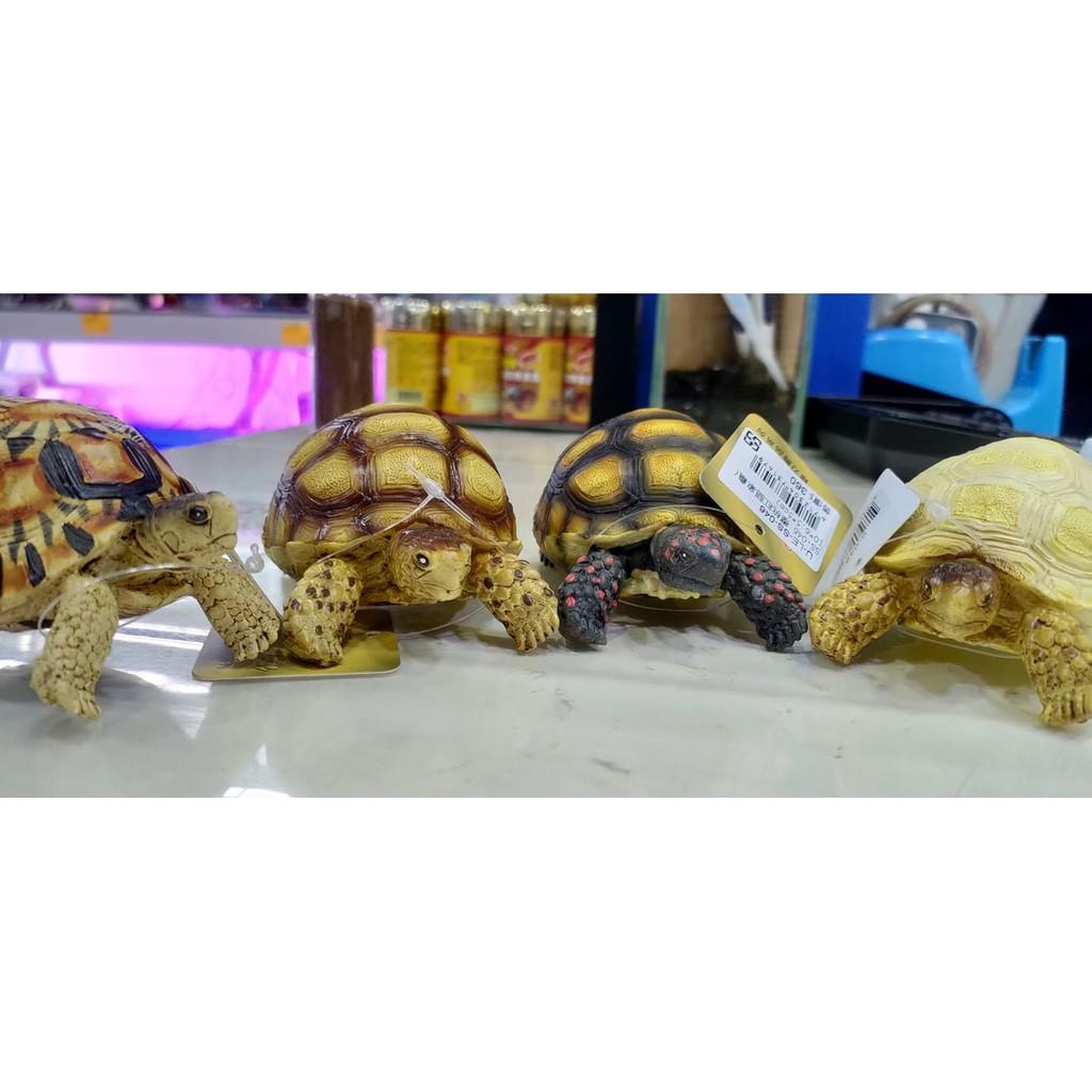 4隻1組 SS-049星龜  SS-048黃頭陸龜  SS-047蘇卡達象  SS-046櫻桃紅腿象龜