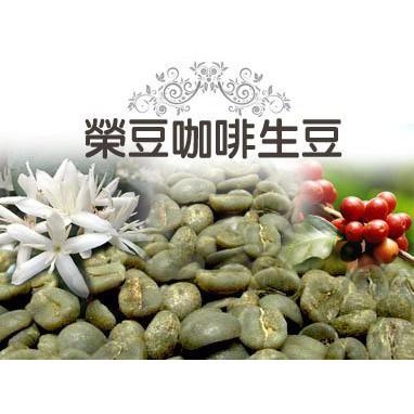 ▲CP值優的好豆▲水洗耶加雪菲G1 沃卡切切擂村 慢速乾燥 每包500公克 【榮豆咖啡生豆】衣索比亞精品咖啡生豆