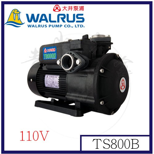 『青山六金』附發票 TS800B 大井 110V 泵浦 靜音不生銹 1HP抽水馬達~抽水機~海水適用 噴霧機 高壓清洗機
