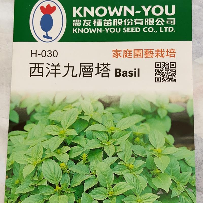西洋九層塔 Basil【香藥草種子】農友種苗 彩色原包裝 原廠密封包裝