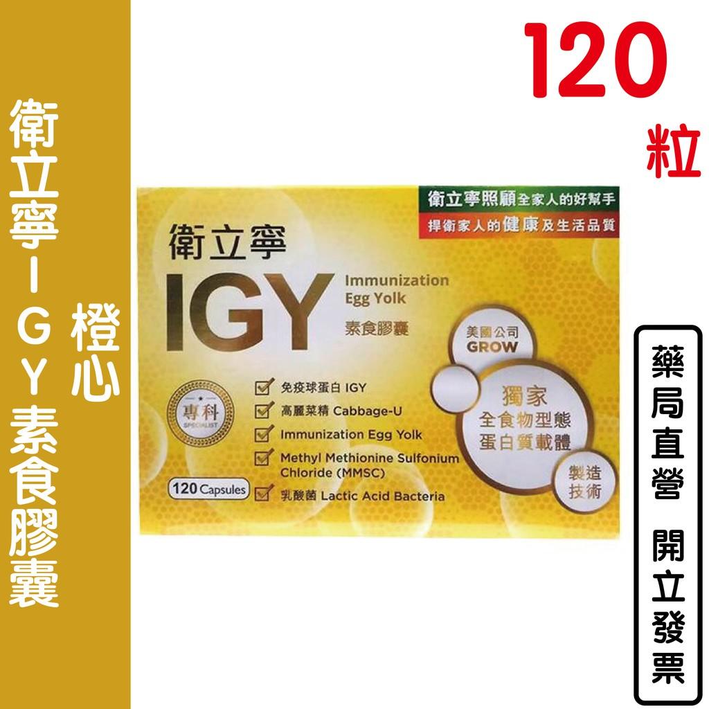 橙心 衛立寧IGY素食膠囊(120粒)買大送小30粒 免疫球蛋白 乳酸菌 高麗菜濃縮物【元康藥局】