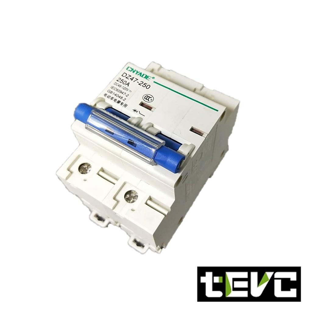 《tevc電動車研究室》直流 過電流斷路器 2P DC無熔絲開關 電動車開關 船用開關 短路保護開關 250A 開關型