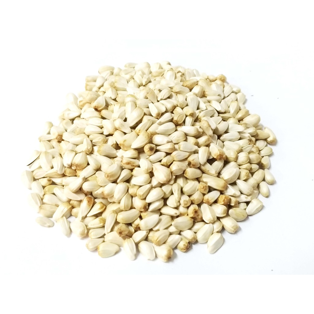 *來成鳥園*600克/精選飼料~澳洲進口白花子/粗蛋白質維生素礦物質/蜜袋鼯飼料、鳥飼料、鸚鵡飼料、倉鼠飼料