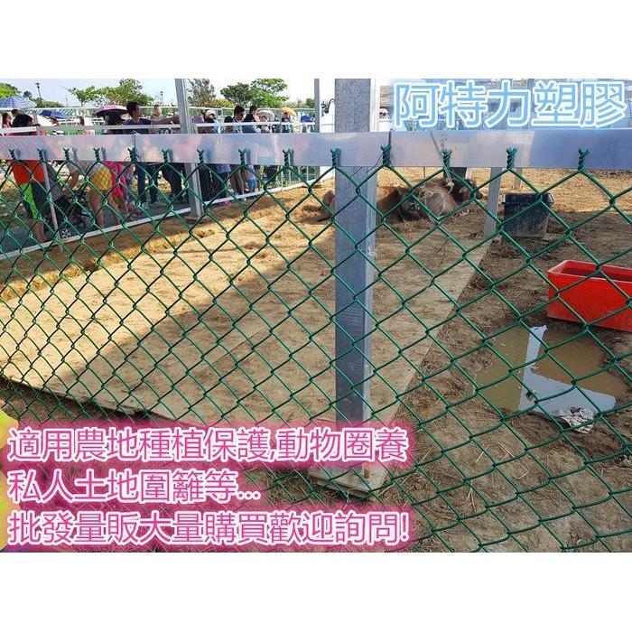 籬笆網 鐵網 圍籬網 綠色鐵網 鐵網 塑膠網 鐵窗網 安全網PVC塑膠包覆菱型網 堅固耐用 台灣製現貨供應中