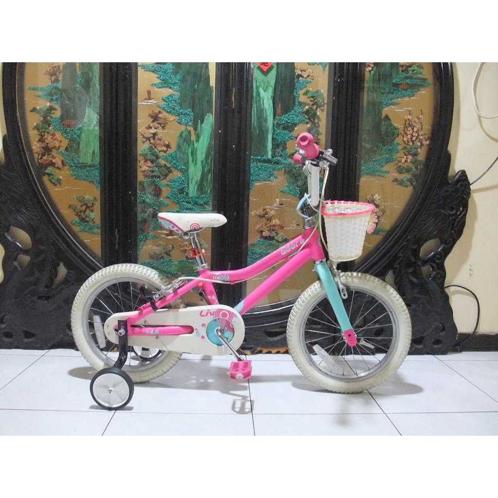 鋁合金16吋捷安特adore 16兒童腳踏車附輔助輪車燈桃園自取適合身高100-110之間騎乘
