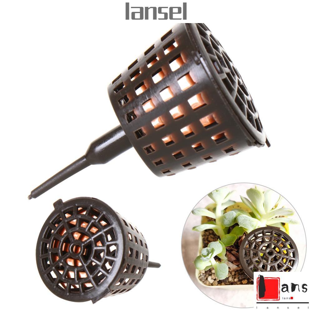Lansel 多肉植物生長用品小園藝工具肥料盒圓頂塑料盆栽植物熱帶蓋