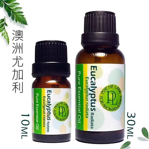 PL 澳洲尤加利純精油 10/30ml。Eucalyptus Radiata