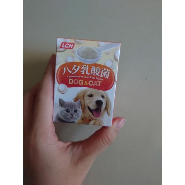 寵物零食出清*LCH乳酸菌 30g