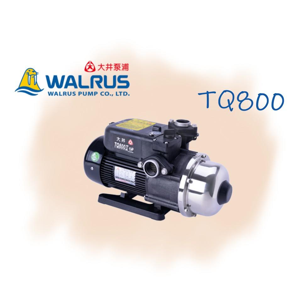 【信賴五金】🔅優惠價🔅大井WALRUS TQ800 TQ800B 1HP 加壓機 電子穩壓加壓機 加壓馬達 泵浦