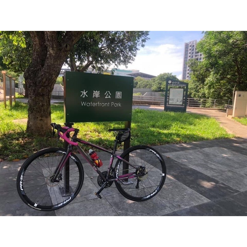 Giant捷安特Liv invite 1公路車 XS