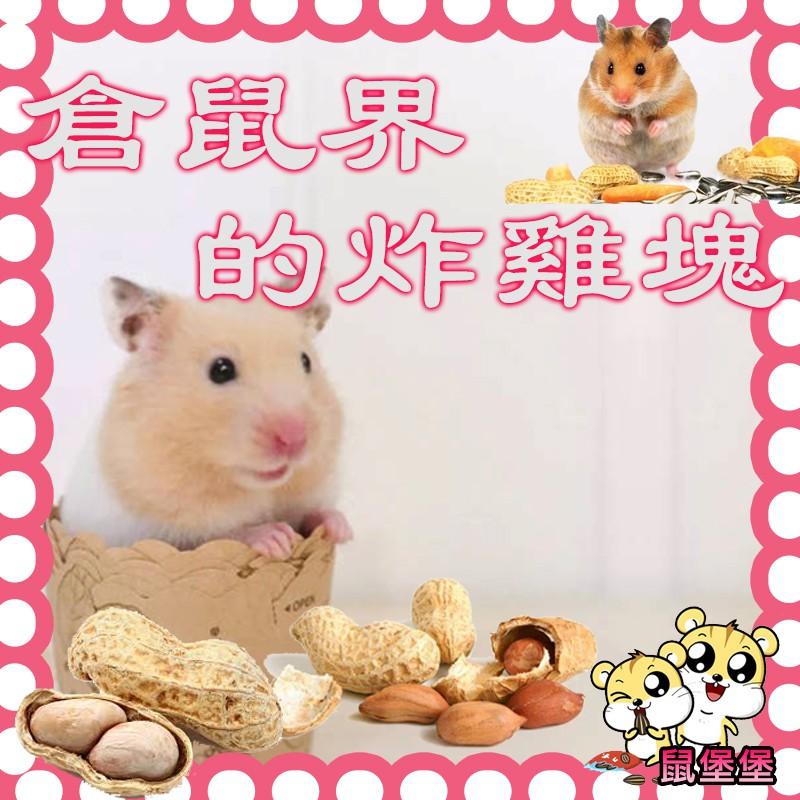 鼠堡堡 磨牙飼料 花生 零食 倉鼠磨牙 磨牙零食 倉鼠/黃金鼠/松鼠/兔子/蜜袋鼯/實驗鼠/天竺鼠 飼料 小葵花瓜子