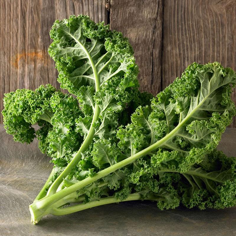 【種子】羽衣甘藍種子種籽 觀賞綠色蔬菜種籽 葉甘藍