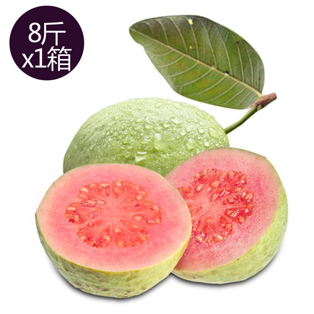 【果之家】燕巢紅心芭樂8台斤(1箱/約9-13顆)