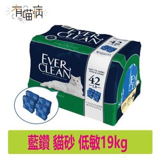 【 Ever Clean 藍鑽】免運 藍鑽 貓砂 低敏 低過敏 結塊 貓砂 藍標-42lb(19kg) 限一件一包 新北市