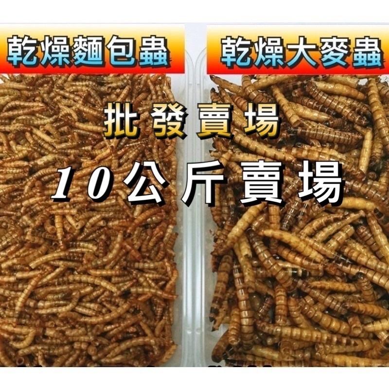 批發賣場 乾燥麵包蟲 乾燥大麥蟲 乾燥南極蝦 麵包蟲乾 大麥蟲乾 南極蝦乾 鳥飼料 烏龜飼料 倉鼠飼料