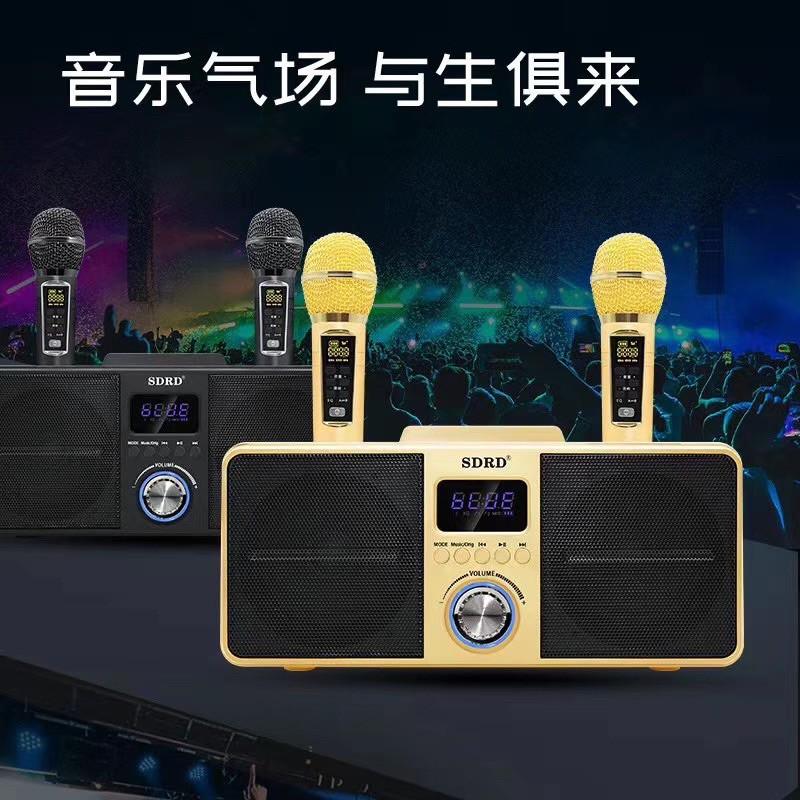SDRD-SD309 貓頭鷹音響 一鍵消音 藍芽音響 雙人對唱 麥克風 貓頭鷹309 309 音響 家庭KTV KTV
