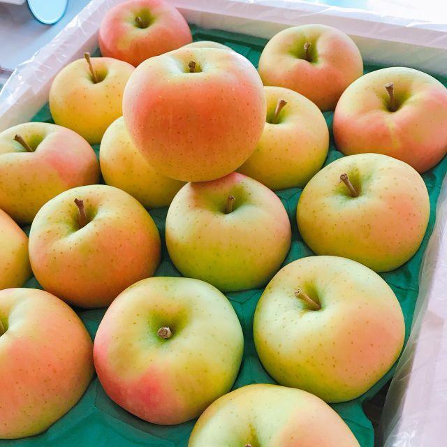 TOKI水蜜桃蘋果】日本青森《超稀有トキ品種.大顆等級日本青森原裝進口_32