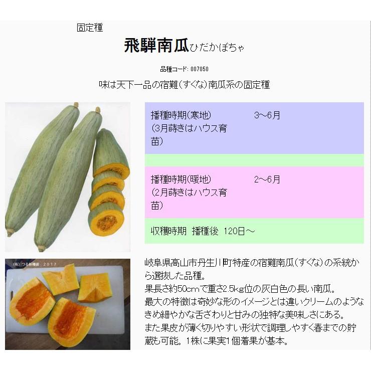 日本原裝飛騨かぼちゃ種子一包160元(超好吃貴族南瓜)