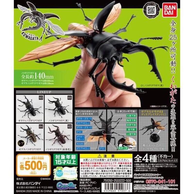 (賣 3號+1號 ) 日版 BANDAI 長頸鹿鋸鍬形蟲 環保扭蛋 造型轉蛋 可動 超擬真 昆蟲 甲蟲 GASHAPON