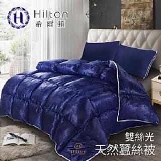 《發哥百貨》現貨 台灣出貨 ins 【Hilton希爾頓】 拜占庭雙絲光天然蠶絲被2.5KG/ 藍 新北市