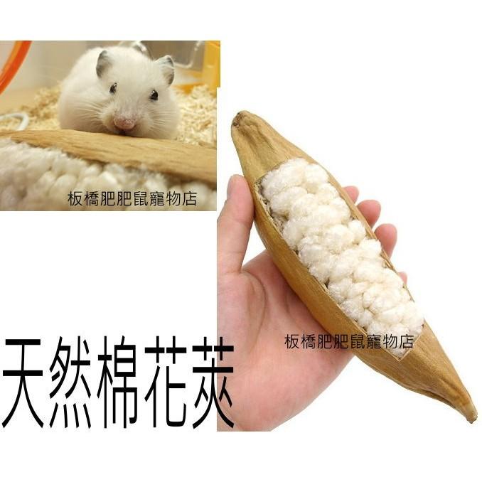日本MARUKAN寵物鼠有巢氏木棉 MR-598