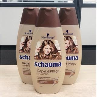 【油樂網】Schwarzkopf 施華蔻 schauma 洗髮精 乳木棗椰子(土黃色)400ml 新北市
