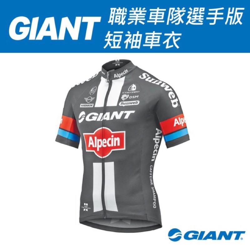 GIANT-ALPECIN 職業車隊選手版 短袖車衣