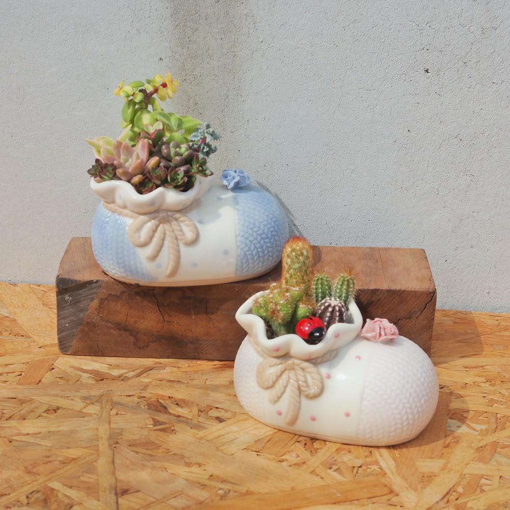 荳荳多肉植物與小雜貨-可愛造型鞋多肉植栽組合(大)