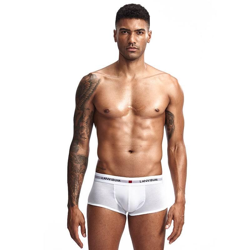 新款型男運動必備款現貨男士內褲青年U凸低腰棉質四角褲純色大碼男褲衩