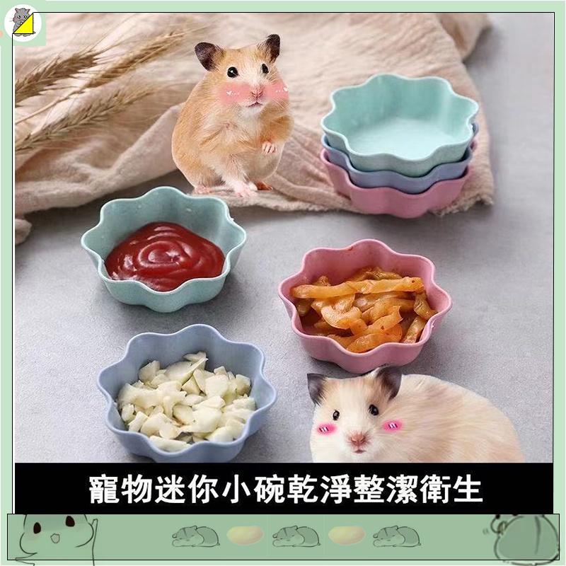 【非你莫鼠🐹】 寵物陶瓷碗 倉鼠食盆 倉鼠飼料碗 倉鼠陶瓷碗陶瓷飼料碗 陶瓷小碗 布丁鼠 豚鼠 松鼠 黃金鼠 倉鼠用品
