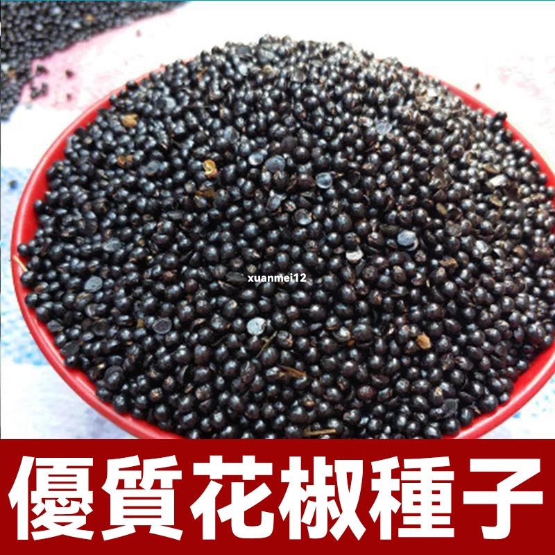 花椒種子 大紅袍花椒種子  育苗用花椒種子 陽台盆栽四季易種 川椒山椒種子 蔬菜種子