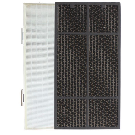 Amway 安麗 第二代 2代 101076-T 11-8040 20mm【現貨 副廠】活性碳 空氣清淨機 濾網