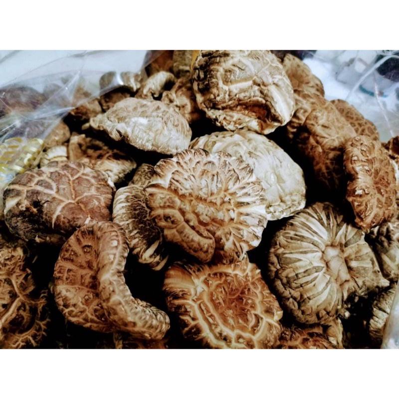 日本野生櫟木菇(100克一份)~日本香菇 冬菇 乾香菇日本白花菇  花菇 冬菇 乾香菇 車輪牌鮑魚 魚翅 刺参 日本干貝