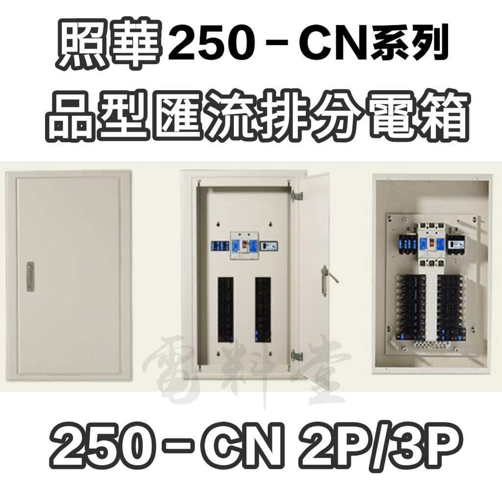 【電子發票】照華 250-CN 2P/3P 品型箱 匯流排 開關箱 鐵箱 配電箱 分電箱 無熔絲開關 箱體 不含開關