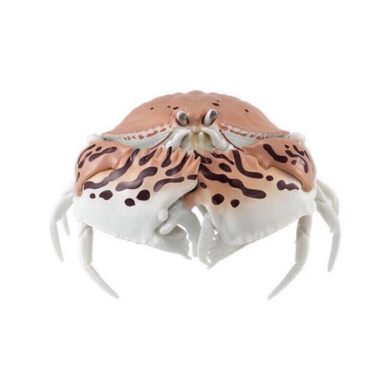 【扭蛋牛起乃】現貨只剩饅頭蟹BANDAI 轉蛋 扭蛋 糰子蟲造型轉蛋06 饅頭蟹 造型轉蛋 環保扭蛋