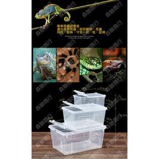 森聯商行 長方形爬蟲飼養盒 S 掌上名蛛 蜘蛛盒/ 蜈蚣盒/ 蠍子盒/ 昆蟲盒/ 守宮盒/ 爬蟲盒/ 烏龜盒
