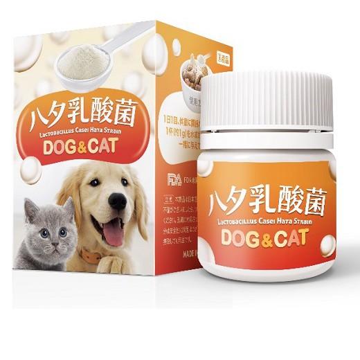 日本原封原裝進口 寵物專用 LCH乳酸菌 食用一個月