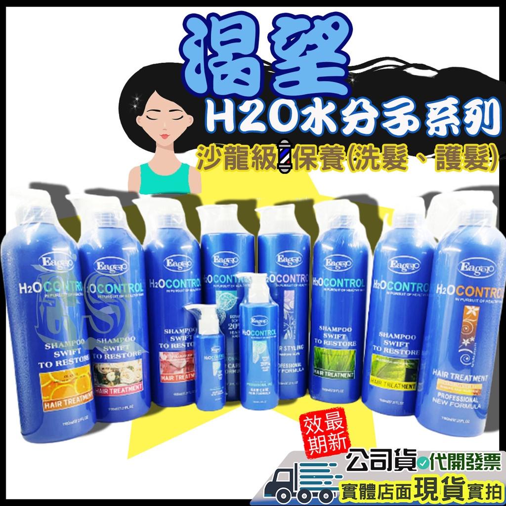 現貨☑渴望H2O水分子全系列 新氨基酸魔髮靈 想像空間 精油洗髮精 護髮素 修護霜 護髮乳 修護素奇蹟髮品