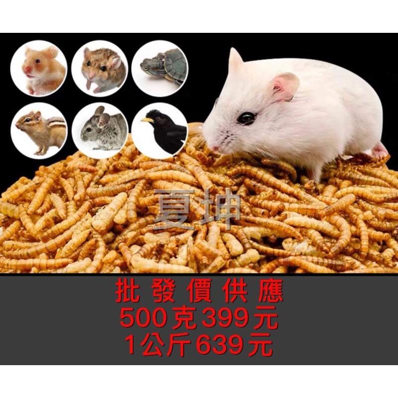 (夏坤批發)麵包蟲乾 倉鼠飼料 1公斤 500克 烏龜飼料 蜜袋鼯飼料 刺蝟飼料 面包蟲 麵包蟲干
